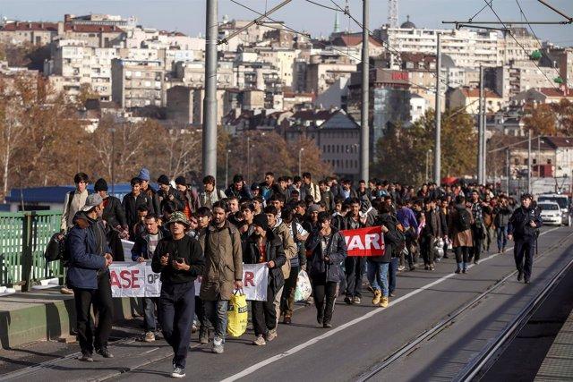 Un grupo de inmigrantes atrapados en Serbia camina hacia la frontera con Croacia