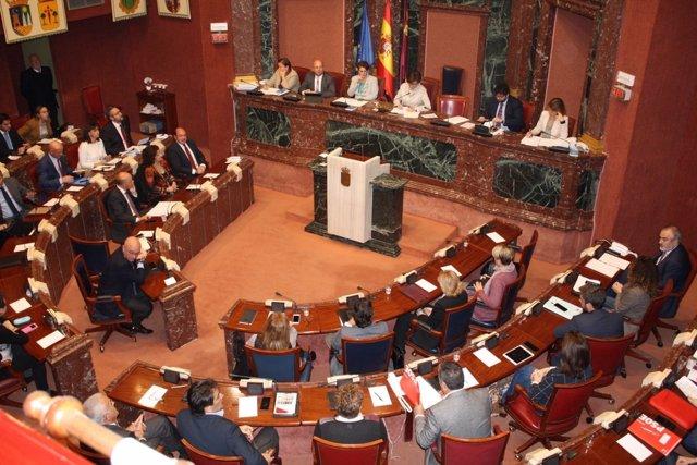 Imagen del Pleno de la Asamblea