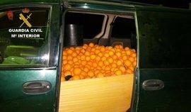 Detenidos tres presuntos autores del intento de robo de 710 kilos de naranjas en Huelva