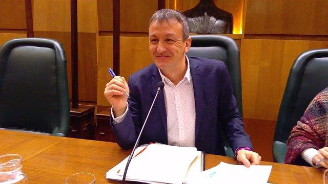 Consejero de Economía y Cultura del Ayuntamiento de Zaragoza, Fernando Rivarés