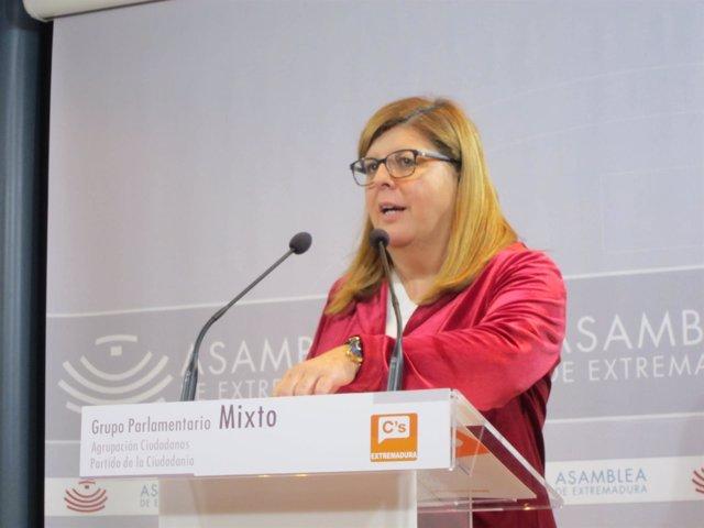 Domínguez, en su comparecencia