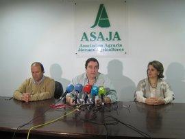 """Asaja Extremadura pide la suspensión de las elecciones al campo por """"incumplir"""" la Ley Agraria"""