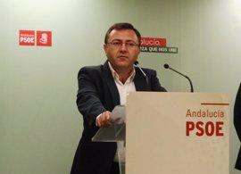 Heredia (PSOE) dice que es el Comité Federal el que tiene que decidir sobre las primarias