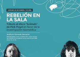 Concierto tributo a Pink Floyd en favor de la investigación biomédica