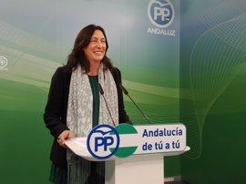PP-A reclama un debate general en el Parlamento tras las movilizaciones sanitarias