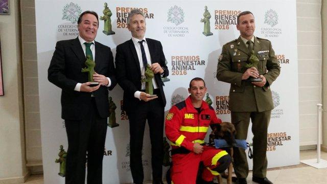 Premios Bienestar Animal 2016