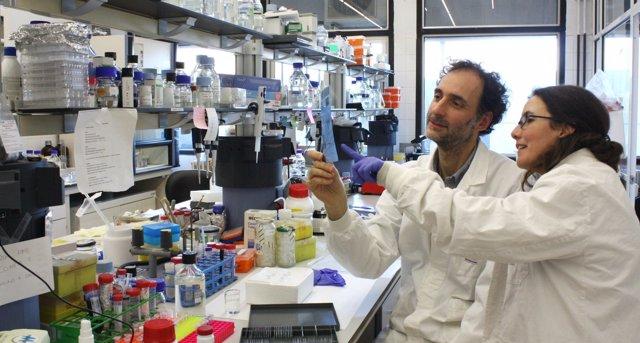 Los investigadores Carlos Saura y Lilian Enríquez en su laboratorio