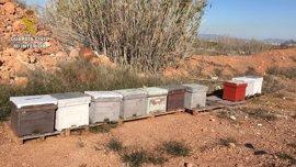 Sucesos.- Investigado un hombre por apropiarse de colmenas en la Vall d'Uixó