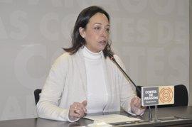 """El PP pide el cese del consejero de Sanidad por su """"ineficacia"""" en la gestión"""