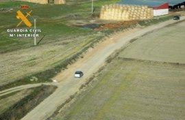 Cuatro detenidos en la Moraña (Ávila) por caza ilegal, daños a parcelas aradas y conducción temeraria