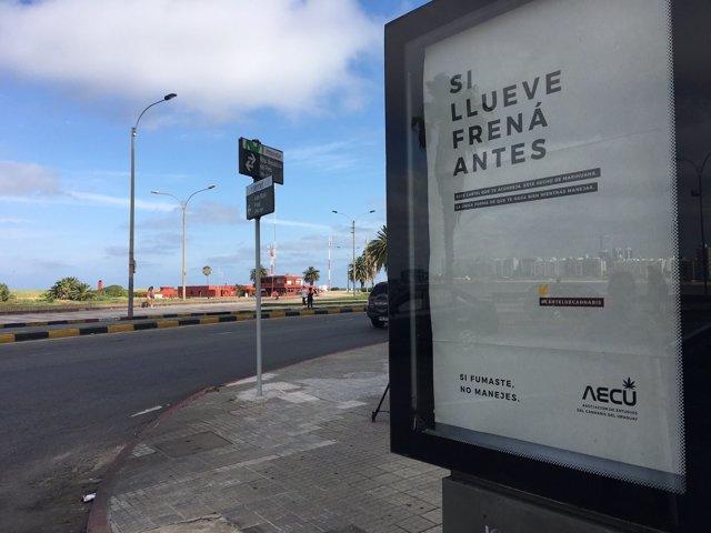 Pósters hechos con cannabis en Uruguay