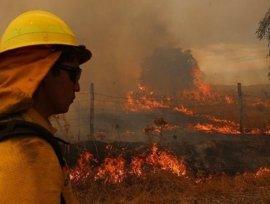 """Los incendios someten a Chile al """"mayor desastre forestal"""" de su historia"""