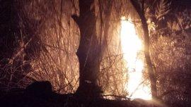 Arden casi 1.000 m2 de bosque de ribera en un conato de incendio forestal en el paraje El Menjú (Cieza)