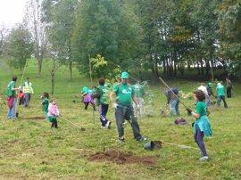 SEO/BirdLife pide que la educación ambiental se incluya en el Pacto de Estado por la Educación