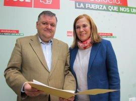 El PSOE de Córdoba respalda a la alcaldesa de Obejo ante la moción de censura del PP