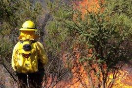 Asciende a ocho el balance de muertos en los incendios de Chile