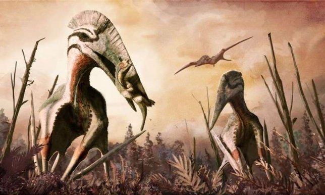 Recreación del pterosaurio gigante