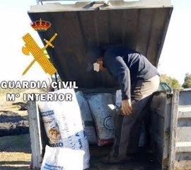 Detenido en Guadalcázar (Córdoba) un vecino de Écija (Sevilla) por robar aceitunas haciéndose pasar por trabajador