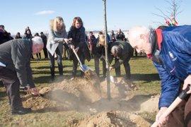 Un retoño del árbol de Gernika recuerda en Sartaguda a las víctimas de la guerra civil