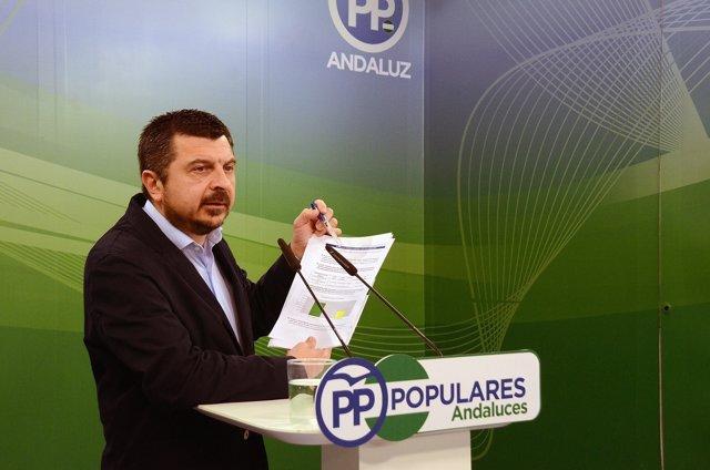 El vicesecretario de Coordinación Política del PP-A, Toni Martín