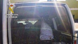 Cinco detenidos en Estepa (Sevilla) por el hurto de 2.809 kilogramos de aceitunas