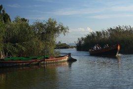 SEO/BirdLife exige salvar Doñana, el Delta del Ebro y la Albufera de Valencia, los tres humedales con más riesgo