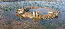 Proyecto del IH para detectar las zonas con más residuos del litoral cantábrico
