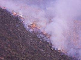 Un docena de incendios siguen activos en Cantabria