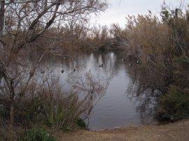 Más de 40 alumnos del IES Francisco Montoya de Las Norias conocen el Paraje Punta Entinas Sabinar, en Almería
