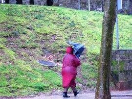 El temporal provoca caídas de árboles y ramas e inundaciones en varias localidades gallegas