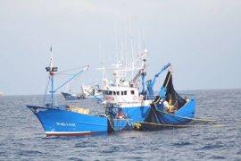 ONG ambientales advierten de que la UE sigue importando productos de mar capturados ilegalmente pese al reglamento INDNR
