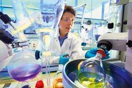 Empresas.- Bayer, entre las compañías más innovadores del mundo según Boston Consultin Group