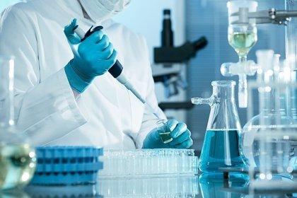 Descubren signos de rejuvenecimiento celular en la reprogramación 'in vivo'
