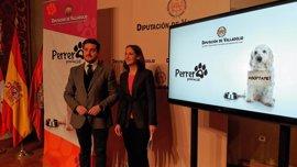 Nueva web para potenciar la adopción de perros y evitar su sacrificio