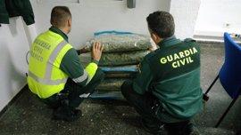 Detenidos tres hombres en Sagunto por esconder 20 kilos de marihuana en el doble fondo del maletero