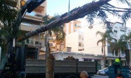 Aviso naranja este domingo por riesgo de fuerte viento en Granada y Almería