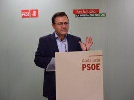 """PSOE-A: El Gobierno no ha dado respuesta en Málaga a los """"temas pendientes"""" de Andalucía"""