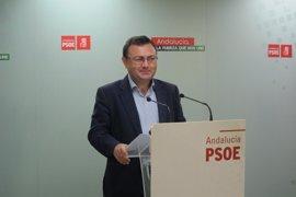 Heredia (PSOE-A) apunta que De la Torre no cuenta con apoyos de su partido para avanzar en proyectos de Málaga