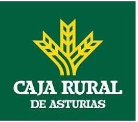 Caja Rural de Asturias obtuvo un beneficio neto de 20,7 millones en 2016, un 0,49% más que el año anterior