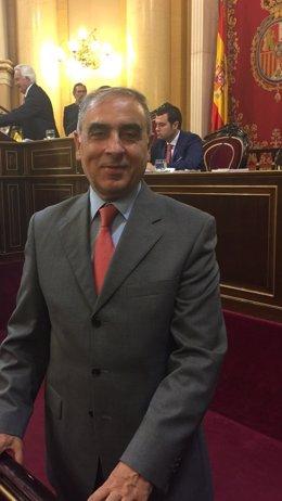 Senador del PSOE José Martínez Olmos