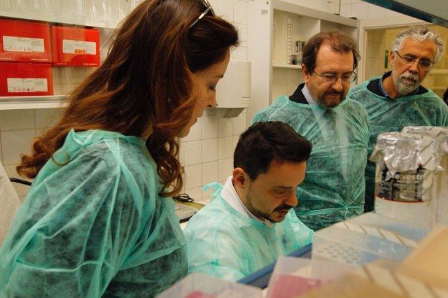 Visita del CSIC y el Ministerio a Baleares por la 'Xylella fastidiosa'