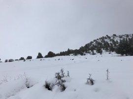 Protección Civil avisa por nevadas y por vientos en tierra y costa del norte de la Península