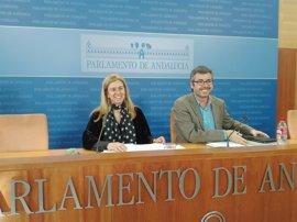 PP-A no apoyará el dictamen de formación si no incluye a Susana Díaz como responsable política