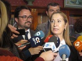 """Pastor ve """"muy positivo"""" que haya varias candidaturas a liderar el PP de Canarias"""