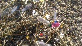 Cruz Roja recoge 677 kilos de residuos del litoral de Mallorca