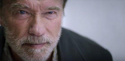 Arnold Schwarzenegger busca venganza en el tráiler de Aftermath (Vuelo 478)