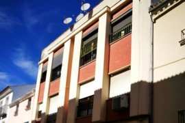 Muere un perro en Lucena tras ser arrojado desde una segunda planta
