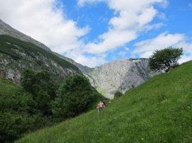 IU pide un decreto que regule las condiciones para autorizar carreras de montaña