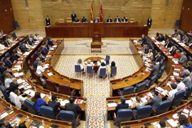 La Asamblea propone como candidatos al Constitucional en primera votación a Ricardo Enríquez y Cándido Conde-Pumpido