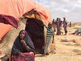 La sequía en Somalia provoca que miles de familias abandonen sus hogares en busca de alimentos